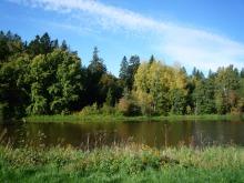 フィンランド暮らしの嫁日記-川沿いの景色