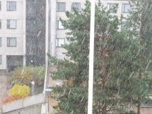 フィンランド暮らしの嫁日記-激しく降る雪