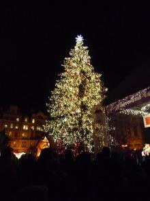 フィンランド暮らしの嫁日記-クリスマスツリー