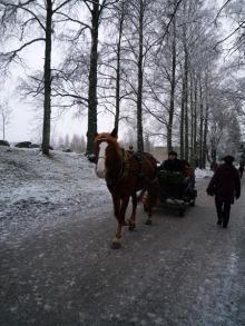 フィンランド暮らしの嫁日記-馬車