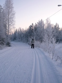 フィンランド暮らしの嫁日記-クロスカントリースキー