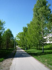フィンランド暮らしの嫁日記-遊歩道