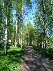 フィンランド暮らしの嫁日記-これもヘルシンキ市内