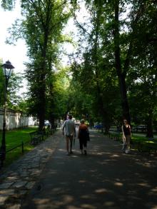 フィンランド暮らしの嫁日記-緑地帯