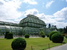 フィンランド暮らしの嫁日記-植物園